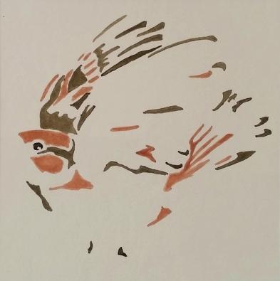 Klaus Schäfer - o. T. (Spatz), Tusche auf Papier, 16 x 16 cm, 2016