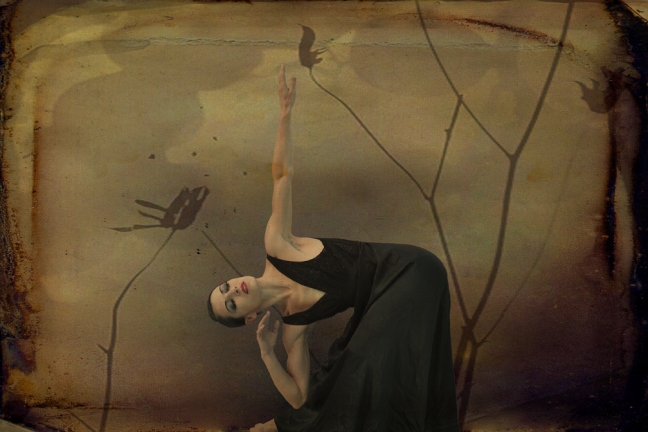 01 Mariano Rubio - Tanz in der Stille 01, Collage Digital, 20 x 30 cm, 2015